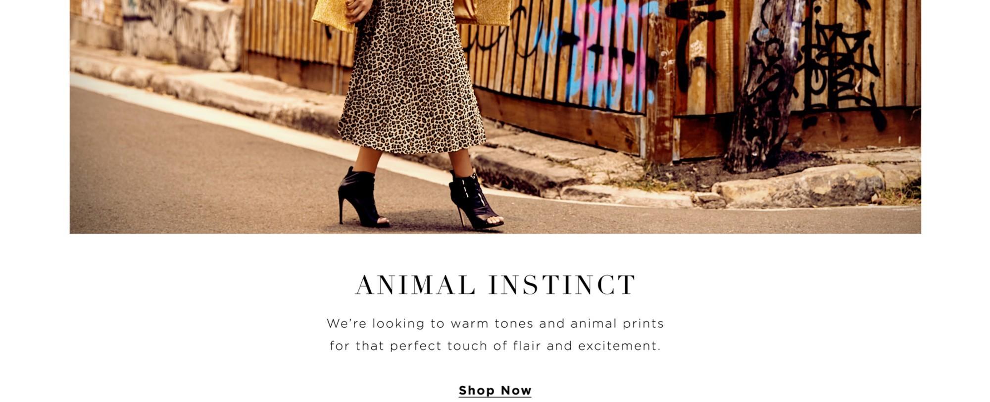City Chic Animal Instinct Collection